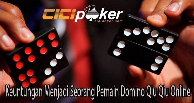 Keuntungan Menjadi Seorang Pemain Domino Qiu Qiu Online